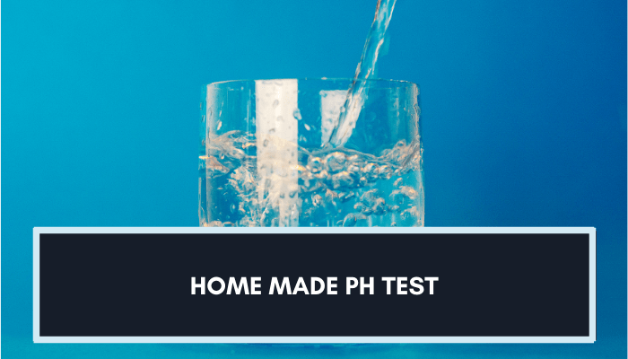 How To Make A Homemade pH Test For Water