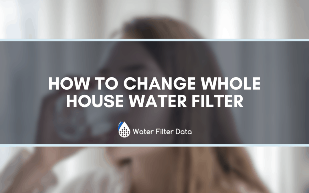 How To Change Whole House Water Filter