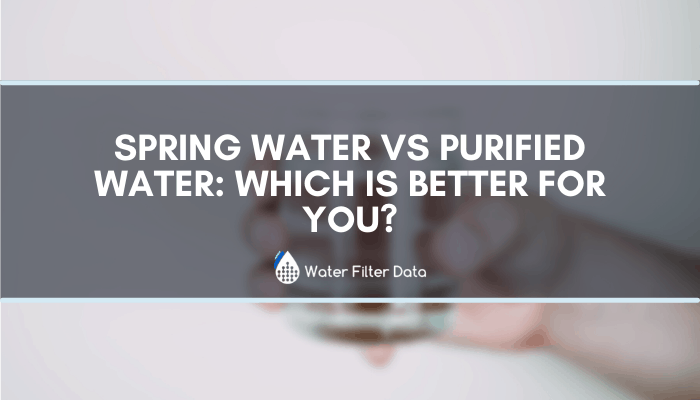 Spring Water VS Purified Water: Which is Better for You?